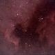 North American Nebula & Pelican Nebula,                                John R Carter, Sr.