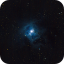 NGC 7023 - The Iris Nebula,                                Alexander Hoffer