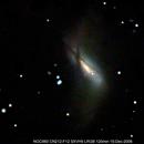 NGC 660,                                Wulf