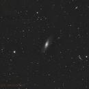 M 106 Galaxy in Canes Venatici,                                Alex Iezkhoff