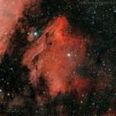 IC5070 - Pelican Nebula,                                Denis Labelle