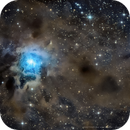 NGC7023, the Iris Nebula,                                Caroline Berger