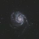 M 101 - The Pinwheel Galaxy,                                pete_xl