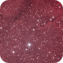 IC 1396,                                StefanoBertacco