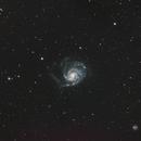 M101 Pinwheel galaxy,                                Zoran Vidrih