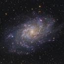 M33 - The Triangulum Galaxy (Collaboration),                                Callum Hayton