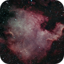 NGC 7000-The North America nebula,                                gibran85