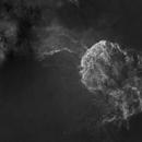 IC443 - Jellyfish nebula - starless,                                Dagolaf