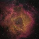 Rosette Nebula,                                Thilo Frey