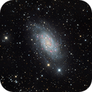 My longest exposure to date: almost 16 hrs on NGC2403,                                Luigi Fontana