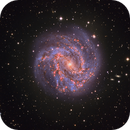 M 83, Spiral Galaxy in Hydra,                                flyingairedale