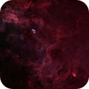 Cygnus center,                                Lukasz Socha