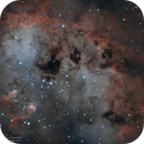 IC410 Tadpole Nebula in Narrowband Bicolour Palette,                                Kayron Mercieca