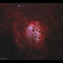 Tadpoles Nebula (IC410) with RASA 8,                                Göran Nilsson