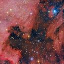 NGC 7000 E IC 5070 - NEBULOSA AMÉRICA DO NORTE E PELICANO,                                Irineu Felippe de Abreu Filho