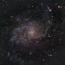 Messier 33 - Triangulum Galaxy,                                Mark Spruce