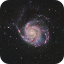 M101 - The Pinwheel Galaxy in HaLhaRGB,                                Cfosterstars