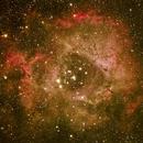 Rosette Nebula,                                Aries-Lux