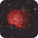 NGC2174 Affenkopfnebel,                                Michael83