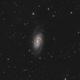 NGC 2903,                                Le Mouellic Guill...