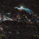 Cygni 52 and the Veil Nebula,                                Joel Quimpo