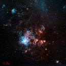 NGC 2033,                                Ivan Hancock