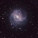 M83,                                Peter Kestel