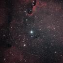 IC 1396,                                Joan Riu
