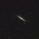NGC 253,                                Thorsten