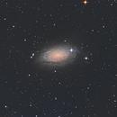 M63 - Sunflower Galaxy,                                Ross Salinger