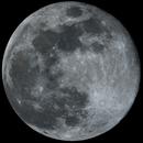 Blue Moon,                                GlaucoH