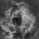 Rosette Nebula,                                Bruce Donzanti