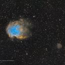Monkey Head - NGC2174,                                vi100