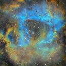 Rosette Nebula - Ngc2244 SHO,                                regis83