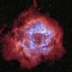 Rosette Nebula - HA/OIII,                                Jim Matzger
