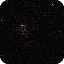E.T. Cluster,                                Don Curry