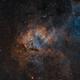 The Lion Nebula in SHO,                                Bogdan Borz