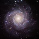 M74, The Phantom Galaxy,                                Ruben Barbosa