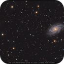 NGC 2336,                                Michael Lorenz