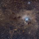 Iris Nebula NGC 7023,                                Emmanuel
