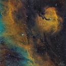 IC-2177 Seagull-head,                                Los_Calvos