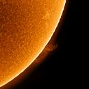 The Sun in H-Alpha,                                Rouzbeh