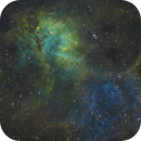 Lion Nebula In SHO,                                mikefulb