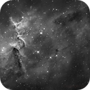 Heart Nebula Core Sh2-190,                                Dean Salman