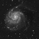 M101 The Pinwheel galaxy,                                Alan Hancox
