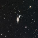NGC 5394/94 - The Heron Interacting galaxies in Canes Venatici,                                Terry Danks
