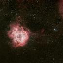 Rosette Nebula,                                Steve Furminger
