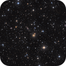 NGC6340 field with IC1251, IC1254, and others in Draco,                                Frederick Steiling