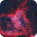 Heart Nebula,                                KC
