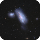 NGC4490 Cocoon Galaxy,                                tommy_nawratil